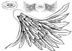 angel wing halo set - stock illustration