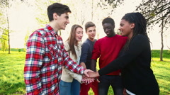 Stock Video Footage of Multiracial Teen Group, Teamwork concept