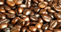 4k coffee beans closeup,drinks caffeine food raw material,delicious dishes bean - stock footage