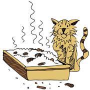 Dirty cat litter box Stock Illustration