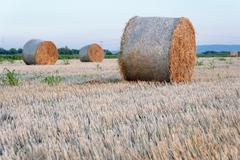 Straw bale / hey stack on golden sunny day with clear skies in the background Stock Photos