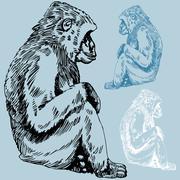 ape drawing - stock illustration