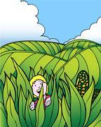 Child adventure: corn field farm Stock Illustration