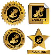 zodiac - aquarius - stock illustration