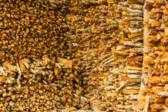 the wood for the fire - stock photo