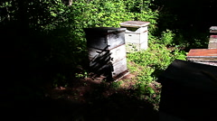 Wooden framed beehives stacked in field - slow motion Stock Footage