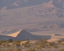 Pan - Sand Dunes in Stovepipe Wells area, Death Valley, sparse vegetation Stock Footage
