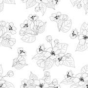 Stock Illustration of Seamless pattern, apple tree flowers contours