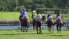 4k Horse Racing show jumpers jump over the hurdle Stock Footage