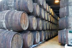 Stock Photo of cellar with wine barrels