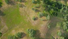 Aerial shot of untouched green land, California - stock footage