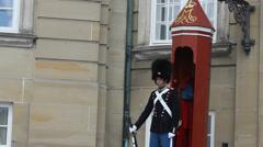 Royal Guard Amalienburg Palace Stock Footage
