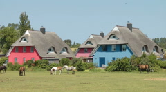 Colorful Holiday homes at Ahrendshoop, Mecklenburg Western Pomerania, Germany Stock Footage