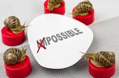 Snail business meeting metaphor Stock Photos