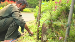 The view of a worker working with soil and flowers in the botanical gardens. Stock Footage