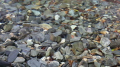 Pebbles in a Clean and Cold Mountain Water Stock Footage