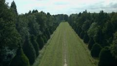Aerial shot of avenue of trees leading to manor house Stock Footage