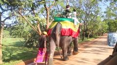 Tourists riding an elephant in Sigiriya, an ancient palace. Stock Footage