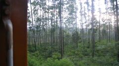 The view of Nuwara Eliya landscape from a moving train, Sri Lanka Stock Footage