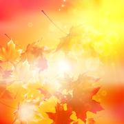 Delicate autumn sun with glare on gold sky. - stock illustration