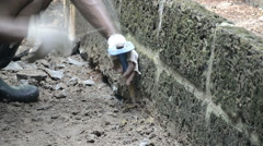 Digging soil - stock footage