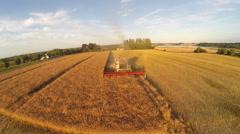 Oilseed rape harvesting with huge combine harvester - stock footage