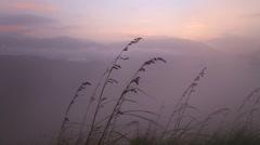 View of foggy sunrise on the Little Adam's Peak in Ella. Stock Footage