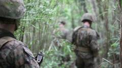 U.S. Marines Training in Jungle - Unit of Marines patrol jungle Stock Footage