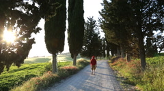 Male walker dirt road Italian countryside cypress trees Tuscany Stock Footage