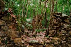 Sugar plantation ruins in jungle Stock Photos
