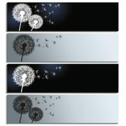 set of horizontal banners with black and white dandelions - stock illustration