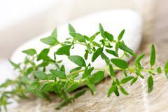 Fresh thyme close up Stock Photos