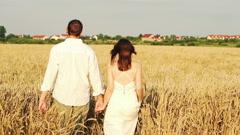 Stock Video Footage of Couple in love walking in wheat field, super slow motion, 240fps HD