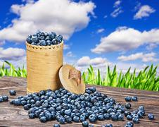 Stock Photo of blueberries in a basket is scattered