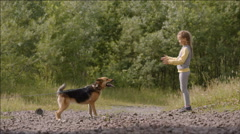 Little girl plays with a dog Stock Footage