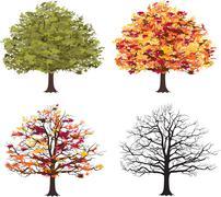 different seasons of art tree. vector - stock illustration