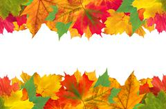 Autumn leaves frame over white for your text Stock Photos