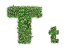 Letter t on green grass isolated Stock Photos