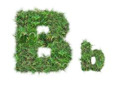 Letter b on green grass isolated Stock Photos