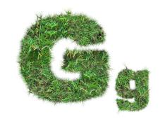 Letter g on green grass isolated Stock Photos