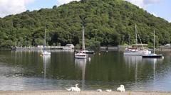 Stock Video Footage of Swans and boats Ullswater Ullswater The Lakes Cumbria England UK