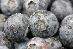 Stock Photo of blueberries close up
