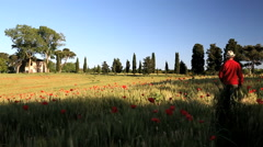 Italian farmhouse barley poppy flowers male walking Tuscany Italy Stock Footage