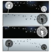 set of horizontal banners black and grey with dandelions - stock illustration