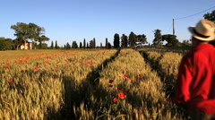 Male walking Beauty in nature poppies barley field Tuscany Italy Stock Footage
