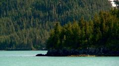 Alaska landscape from boat Stock Footage