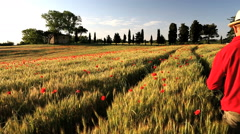 Italian farmhouse barley poppy flowers male walking Tuscany - stock footage