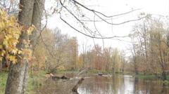 Canoe, kayak, on a autumn day. Stock Footage