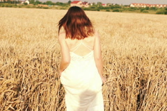 Young woman walking cross wheat field HD Stock Footage