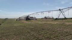 Case Tractor Raking Alfalfa - Sprinkler Stock Footage